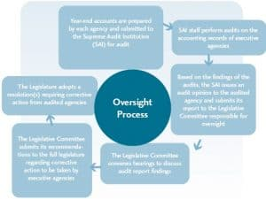 Our Money, Our Responsibility - Chart 5: Oversight Process