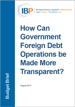 How Can Government Foreign Debt Operations Be Made More Transparent?